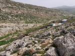 A bedouin camp